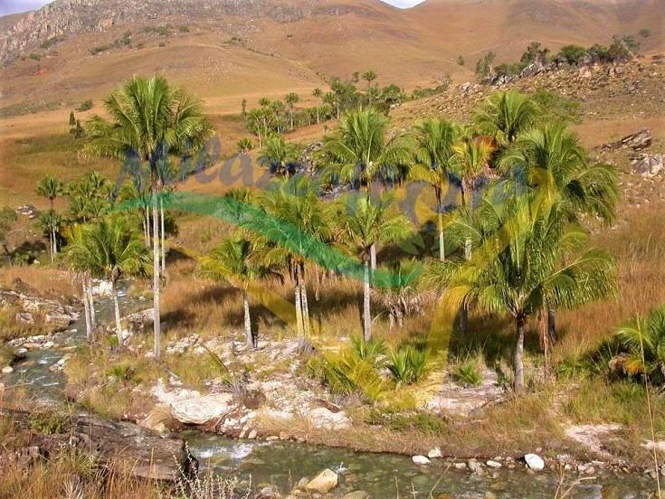 Sugli altopiani del Madagascar